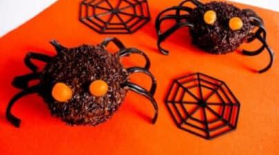 muffin araignée