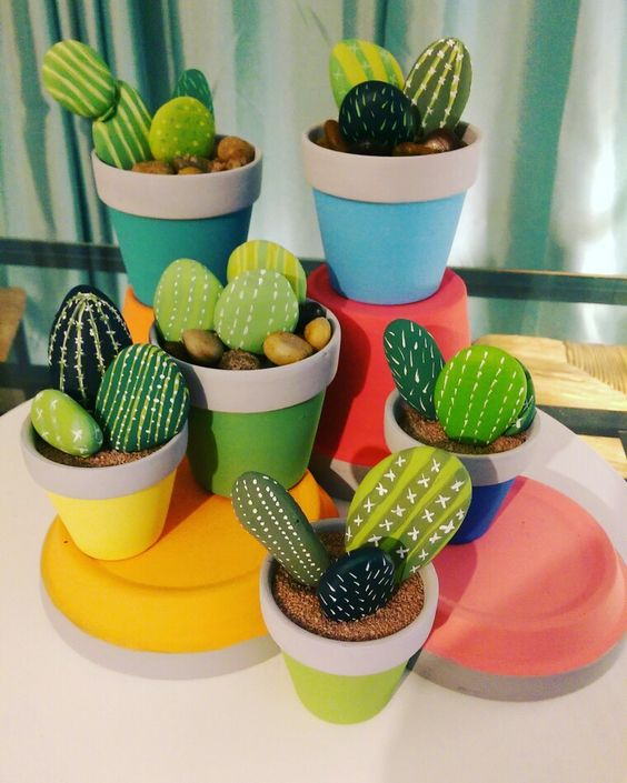 mini jardin cactus